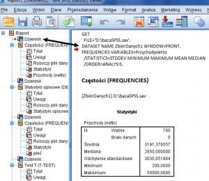 raport SPSS
